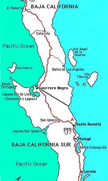 Central  Baja Map for the Baja whale watching adventure