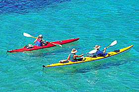 Baja Sea Kayaking Tour